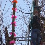 niedziela palmowa i konkurs palm wielkanocnych w lipnicy murowanej (100)