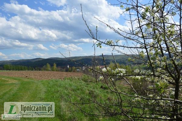 Lipnica Murowana – widok na stronę południową